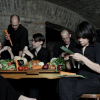 THE VEGETABLE ORCHESTRA